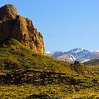 Goemmer's Butte, Spring by Fletcher Hill