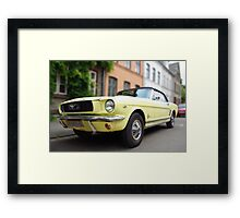 Blond Mustang Framed Print