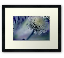 Touch of blue. Framed Print