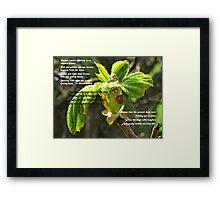 Russet Leaves Framed Print