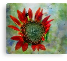 Sunflower Petals Of Flame Against The Sky Canvas Print