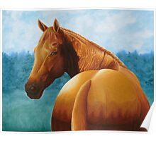 Copper bottom - Quarter horse Poster