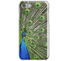 Peacock wide iPhone Case/Skin