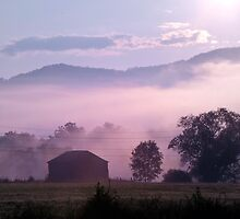 Morning Comes to the Valley by Mary Ann Reilly