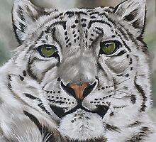 Alert - Snow leopard by Pauline Sharp