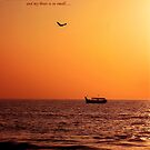 Lord Your Ocean is so vast and my Boat is so small..... by AroonKalandy