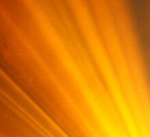 Disco Lights Series - Spot of Orange! by Caroline Angell