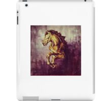 Leap of Faith iPad Case/Skin