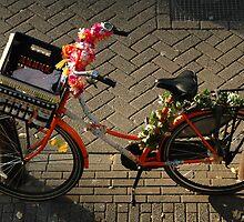 Flowers on the ride. by Diego Marando
