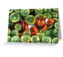 Pesci Pagliaccio Greeting Card