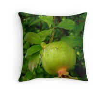 Young pomegranates Throw Pillow