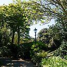 Lamp in Sidmouth Gardens, Devon UK by lynn carter