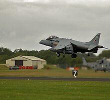 Harrier gr7 by imageworld