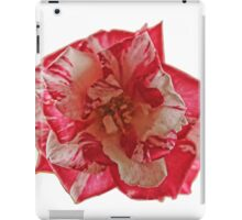 TWO TONE ROSE iPad Case/Skin
