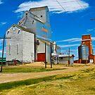 Pioneer Grain Morse  by PFrogg