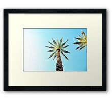 Perfect Palms Framed Print
