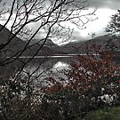 Ullswater Lake, Cumbria by AnnDixon