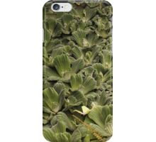 Water Leaves 2 iPhone Case/Skin