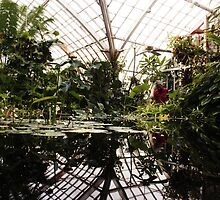 A Reflection is Just a Truth Sideways by STCroiss