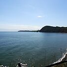 View from Jacobs Ladder, Sidmouth,Devon,UK by lynn carter