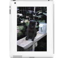 Andrea's Cat: Max In The Garden iPad Case/Skin