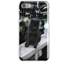 Andrea's Cat: Max In The Garden iPhone Case/Skin