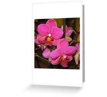 Riot Of Pink Greeting Card