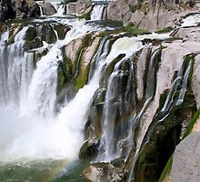 Shoshone Falls by Kelley Jo
