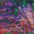Forest of Colours by Susan Werby