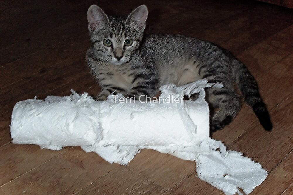 Paper Shredder by Terri Chandler