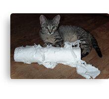 Paper Shredder Canvas Print
