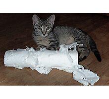 Paper Shredder Photographic Print