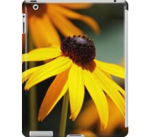 Shine on Me iPad Case/Skin