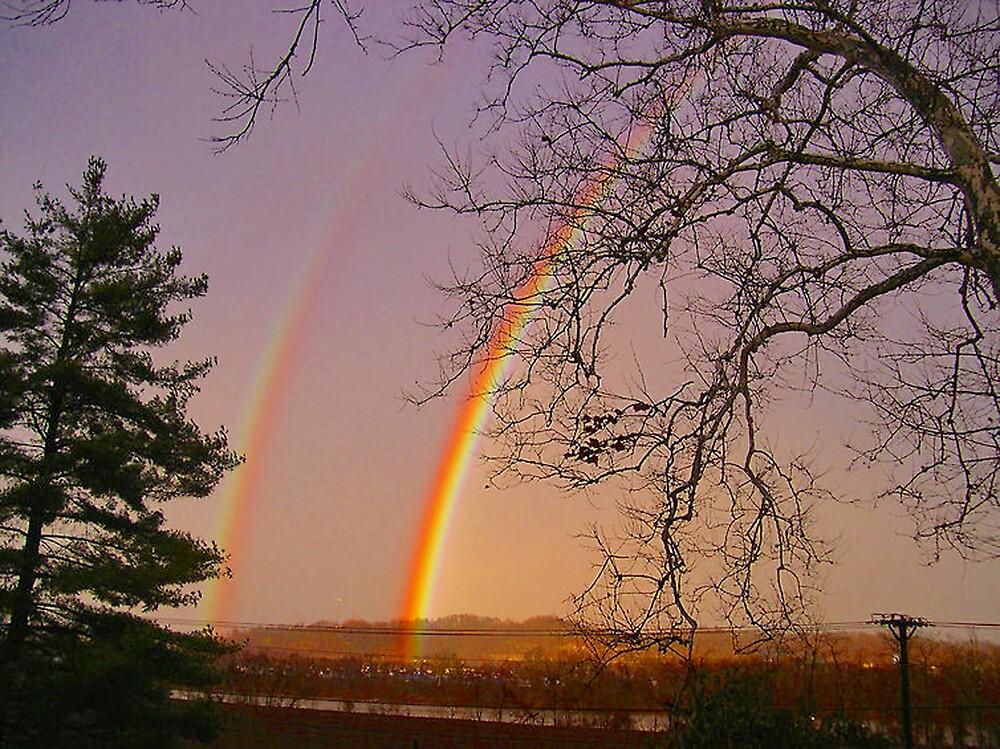 *DOUBLE RAINBOW* by Van Coleman