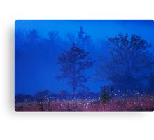 Tennessee Morning Canvas Print