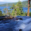 Into Lake Tahoe by Barbara  Brown