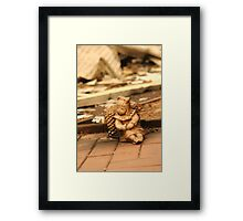 Burnt House Remains from Black Saturday Framed Print