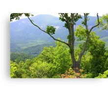 Mountians in NC Canvas Print