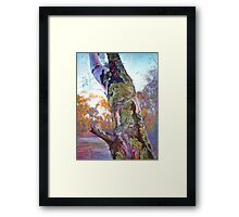 'Mother Nature's Tapestry' Framed Print
