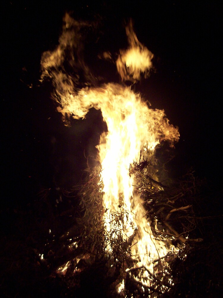 Fire Spirit by Charmaine van Nunen
