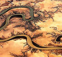 Carron River, Cape York Peninsula, Australia by Shannon Benson