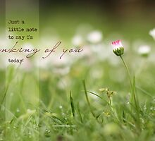 Thinking of You - Tiny Daisy Greeting Card by Tracy Friesen