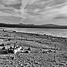 Deserted Beach by NancyC