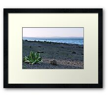 Rocky Point Beach Framed Print