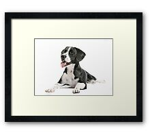 Bentley Framed Print