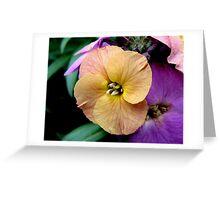 Yellow Wallflower Greeting Card
