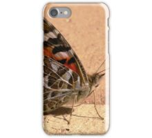 Painted Lady - Vanessa kershawi iPhone Case/Skin