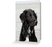 wet wet wet Greeting Card