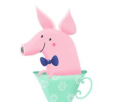 Teacup Pig by pigandpumpkin