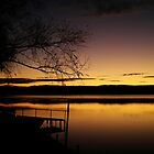 Illawarra Lake by kluublog